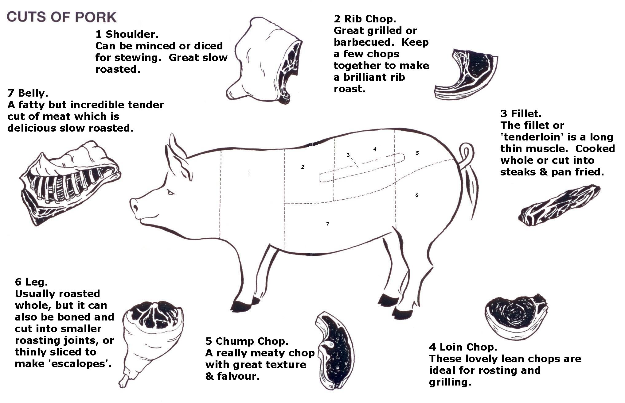 diagram of pig enjoy xo rh enjoyxo com Pig Meat Cuts Chart Pig Butcher Diagram Print