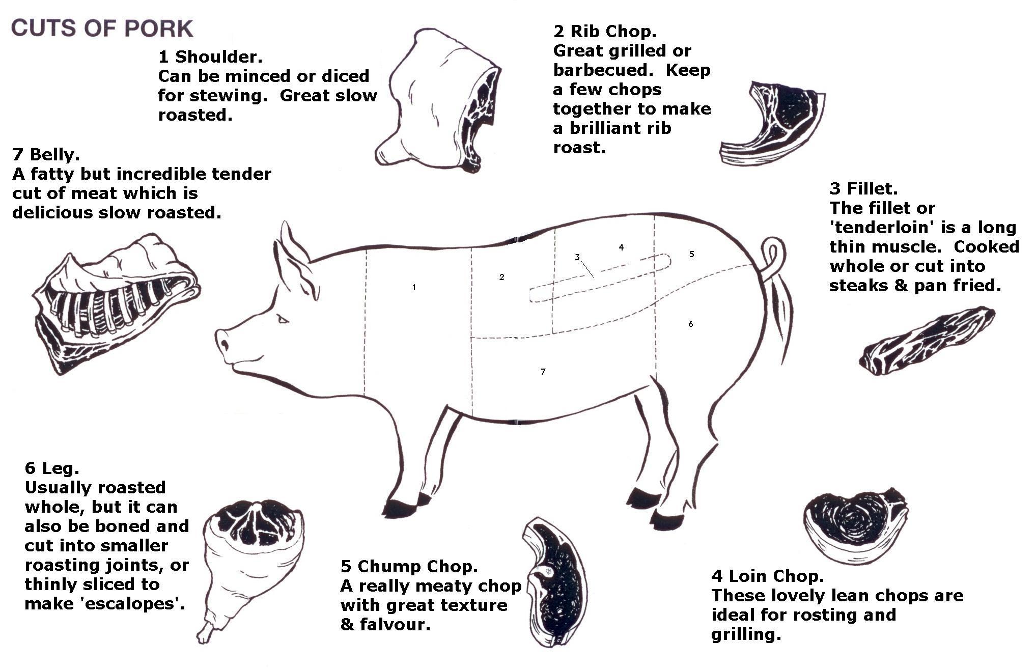 Diagram Of Pig
