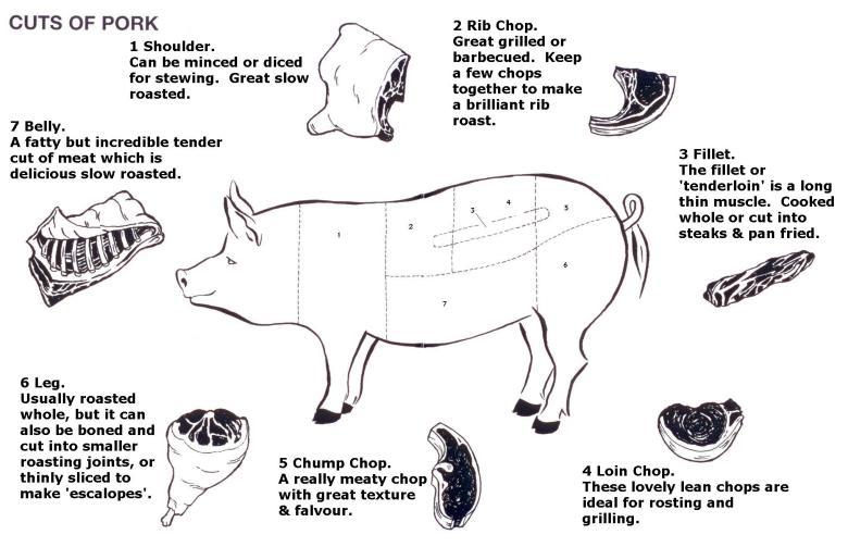 Parts Of A Pig