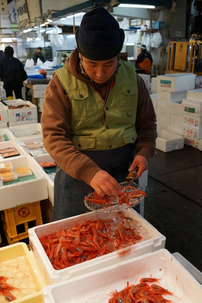 Fish Market 1